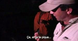 Cyril chauquet se pique avec le dard d'une raie