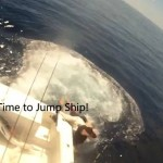anglers-jump-from-boat