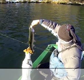 un chien joue avec le poisson que son maitre vient de pêcher