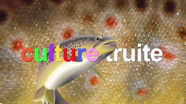 culture truite, le nouveau concept de vidéos de pêche de Culture Fish