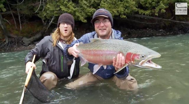 huge steelhead with captain Quinn