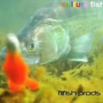 Culture Fish 46