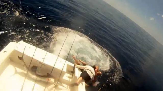 un espadon voiler a sauté sur le bateau, les pêcheurs sautent à l'eau