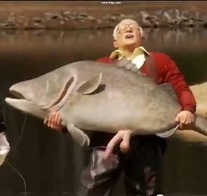 poisson avec un sexe humain, un délire Jackass