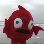 remi-gaillard-poisson