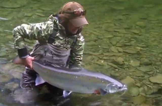 salmon fishing gaspe