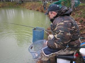 truite au coup en étang