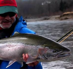 la tête d'une truite steelhead de 20 livres pêchée sur la rivière skeena