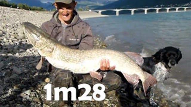 brochet 1,28 m pêché au lac de Serre Ponçon