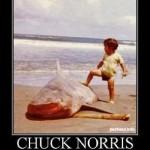 Happy Birthday Chuck Norris