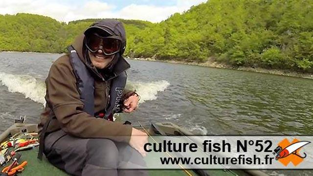 culture fish 52