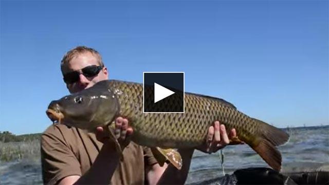 pêche de la carpe en grand lac