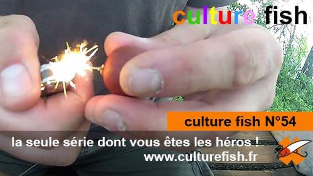 culture fish n°54