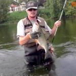 61-culture-fish