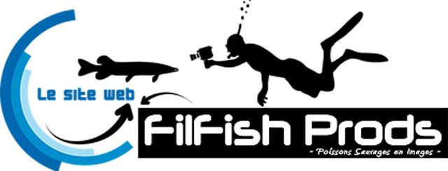 filfish prod vidéos de plongée