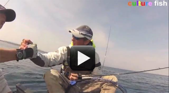 culture fish 73 avec pêche sur la cote d'azur en kayak